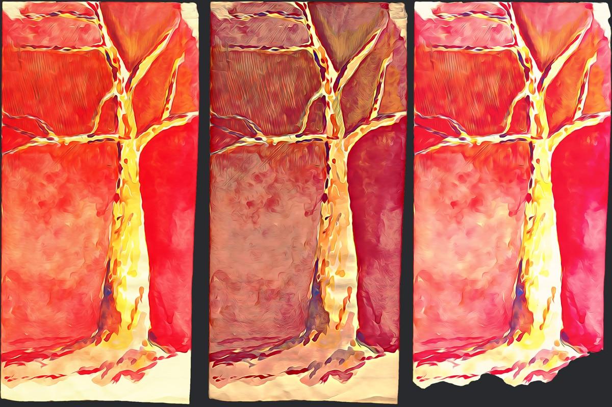 Tree type – Otoño